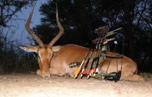 Fotografie Poľovačka v Juhoafrickej republike