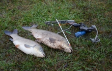 Fotografie Bowfishing Arkansas