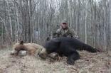 Fotografie Čakanie na baribala, kanadské dobrodružstvo (časť 2.)