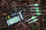 Fotografie Výber šípov na poľovanie s lukom
